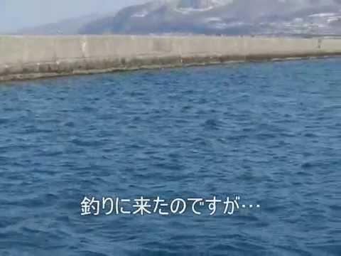 小樽・沖防波堤への渡船が少し前に無くなったというお話