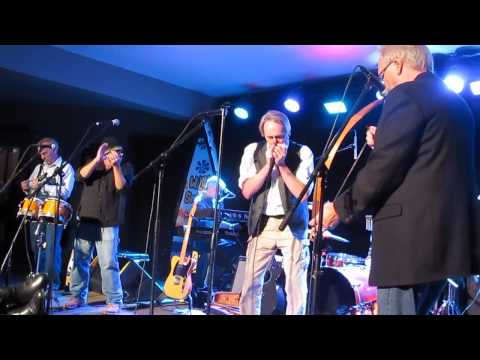 The Ozark Mountain Daredevils Play CHICKEN TRAIN recorded live at Steelville-s WILDWOOD SPRINGS RESORT Missouri November 2nd 2012. The Ozark mountain daredev...
