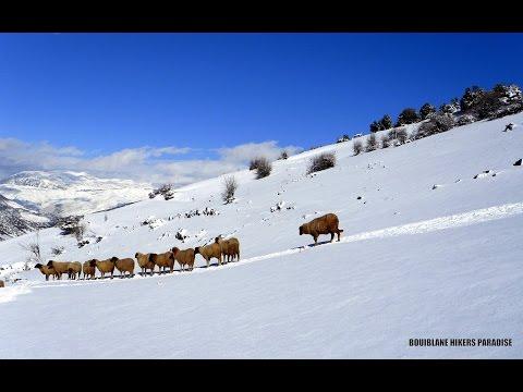 المغرب أرض الثلوج