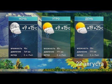 Прогноз погоды на 22 августа: вернётся ли жаркое солнце?