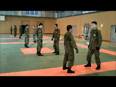 VIDEO: Japan Self Defense Force martial arts