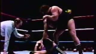 Don Muraco vs  Swede Hansen P2
