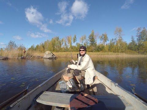 прогноз клева на озере вуокса