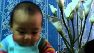 Dinh Vung tron mot tuoi 19/10/ 2011