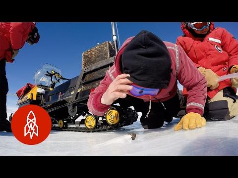 Capturing Space Rocks in Antarctica