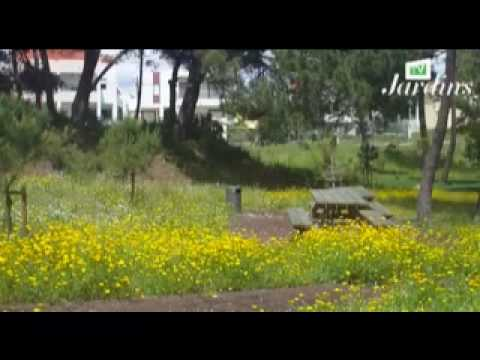 Parque Aventura - Charneca da Caparica
