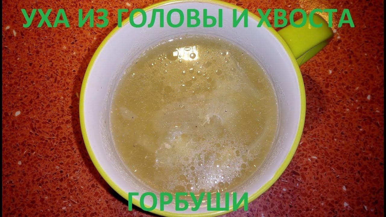Уха из горбуши головы и хвоста рецепт с пошагово в