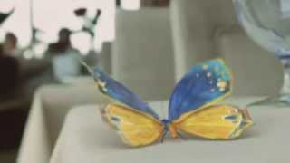 Ukrainian butterfly on the Eurovision