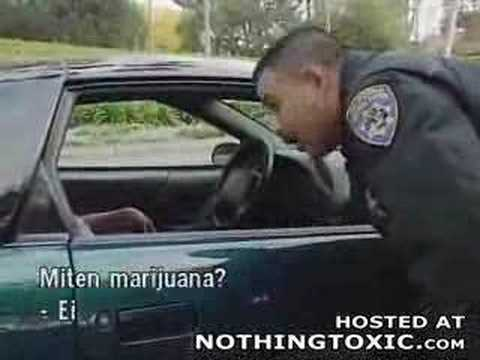Dumbass Admits to a Cop that he was Smoking Weed Video