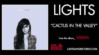 Watch Lights Cactus In The Valley video
