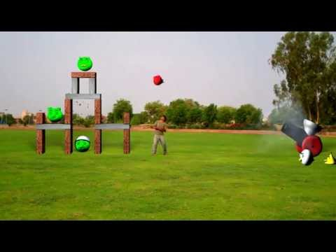 Real Angry Birds with Cannon