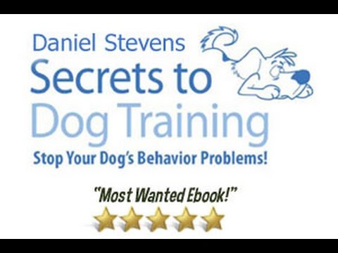 The Secrets To Dog Training Dvd - Dog Obedience Training video