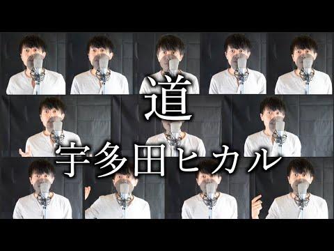 【Acappella?】道/宇多田ヒカル(michi/UtadaHikaru)