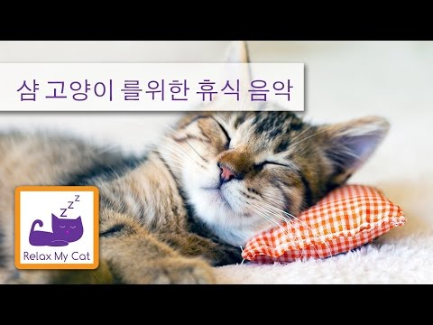 Relax My Cat Relaxing soothing music designed for cats. World music Piano music for pets