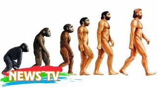 Video clip Xem nhanh quá trình mặt người tiến hóa dài 6 triệu năm chỉ trong 1 phút