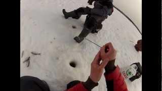 О рыбалке всерьез зимняя ловля плотвы