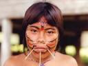 Amazonas - Indios do Brasil Music Videos