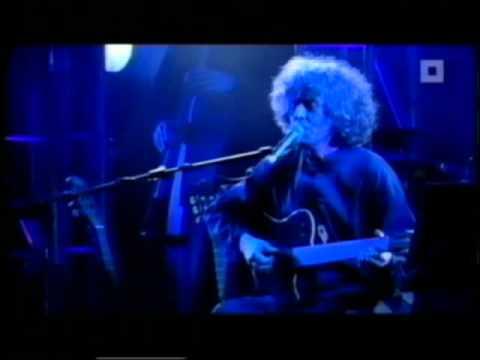 Angelo Branduardi – Il Dono Del Cervo (Live @Antwerpen)