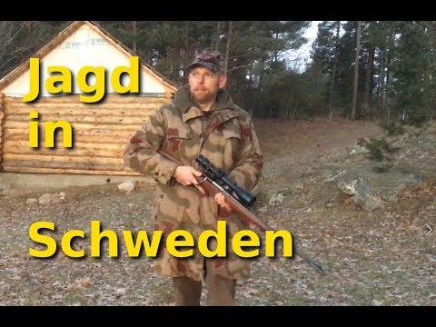 Jagen in Schweden - Zahlen und Fakten