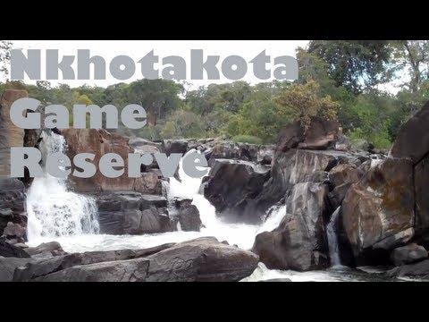 Nkhotakota Game Reserve - Malawi, Africa