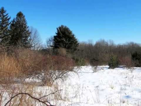Homes for Sale - 0 Huntinghouse Road Glocester RI 02814 - Ronald Duquette