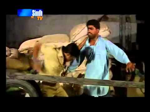 SINDHI Dabbang part 1