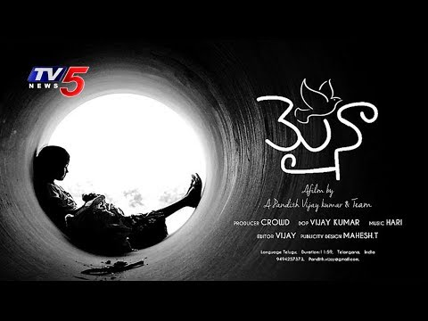 Special Focus On Myna Short Film | Web Show | TV5 News