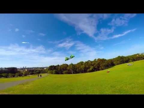Revolution kite flying at Sydney Park with Frankie.