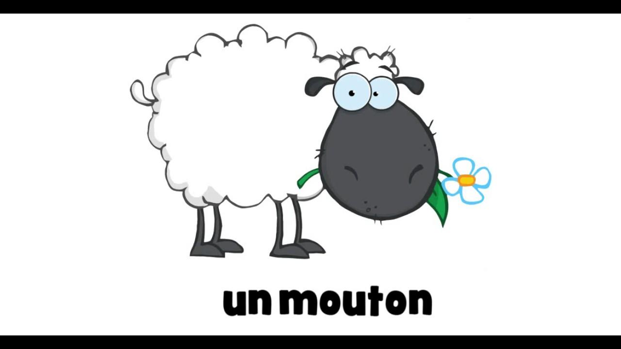 1 dessin par jour un mouton youtube - Dessin mouton ...