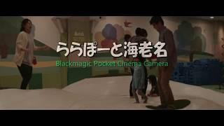 ららぽーと海老名: Blackmagic Pocket Cinema Camera