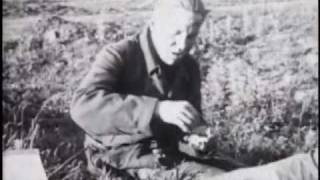 colonel bagshot - six day war - with lyrics