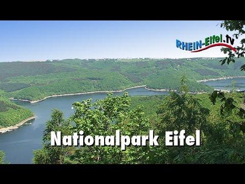 Nationalpark Eifel von Rhein-Eifel.TV