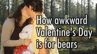 How Awkward Valentine's Day Is For Bears