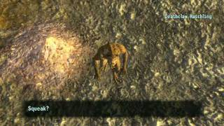 Fallout New Vegas:Mods: Baby Deathclaw Companion