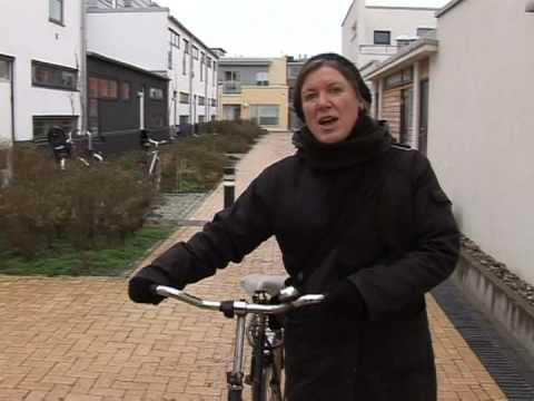 From grime to green: Swedish city saved by environment