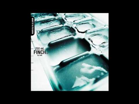 Finch - Untitled