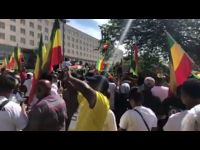 Rally for PM Dr. Abiy Ahmed in Washington DC