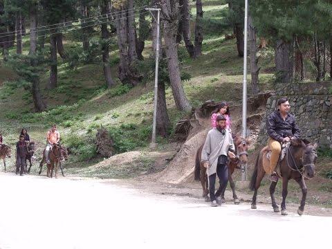 Easy Horse Riding By Tourists At Pahalgam, Kashmir Tourism Video