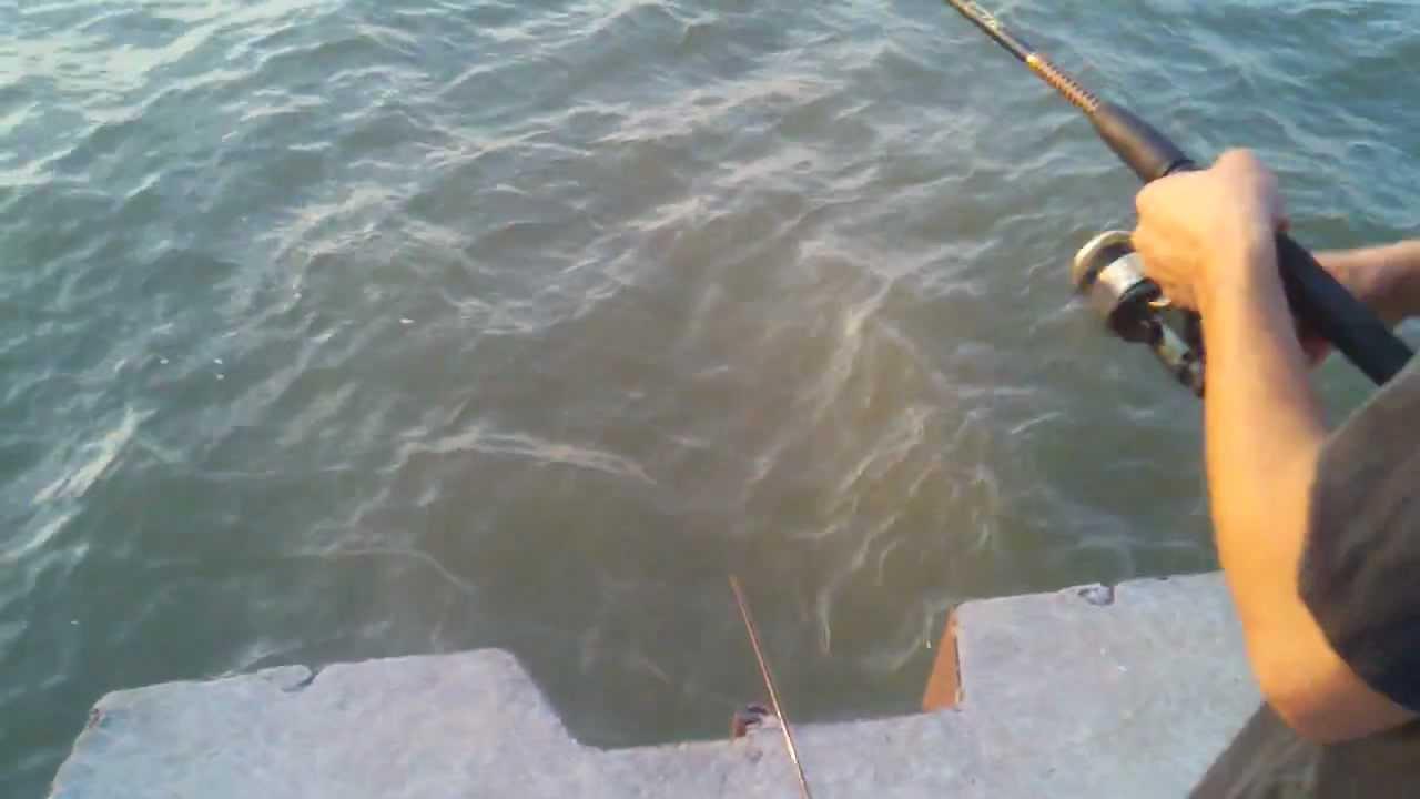 Shoreline fishing huge lake erie catfish youtube for Lake erie pier fishing