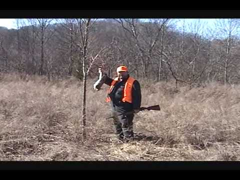 Rabbit Hunting Prank