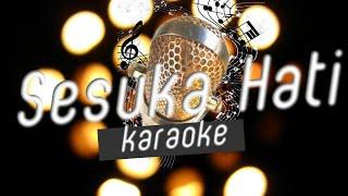 Karina Salim - Sesuka Hati Karaokeminusoneno Vokal
