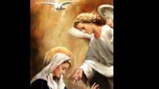 Vídeo 146 de Comunidade Católica Shalom