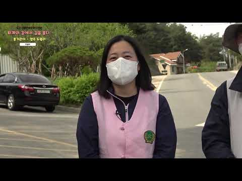 2회 퇴계선생 귀향길 걷기 12일차(풍기관아~영주 두월리)