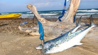 surf fishing for food to cook on the beach - CATCH AND COOK
