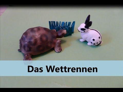 Der Hase Und Die Schildkröte Fabel Die Schildkröte Und Der