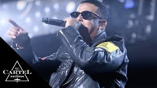 Daddy Yankee - Kingdom | Madison Square