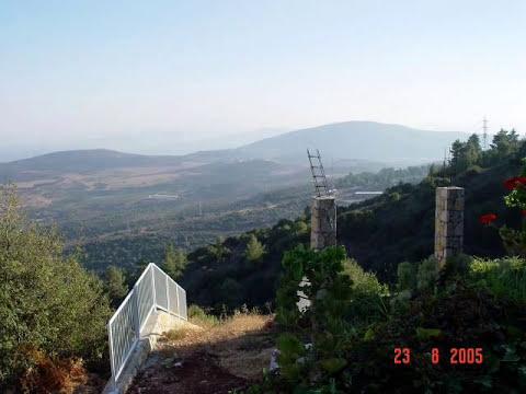 Hanoch Tel-Oren  -  Partos