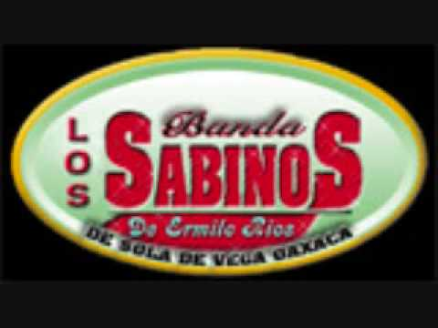 Banda Los Sabinos Samay Que Le Da video