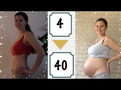 Bauch Wächst Von 4 Wochen Bis 40 Wochen Schwangerschaft Mit Unserem Folgewunder // AnnikasLeben