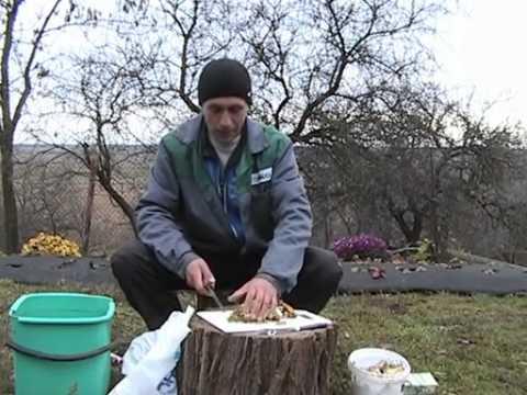 Удобрения в домашних условиях своими руками – ЭМ-бокаши и ЭМ-ургаса